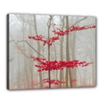 Magic forest in red and white Canvas 20  x 16