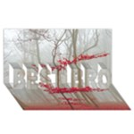 Magic forest in red and white BEST BRO 3D Greeting Card (8x4)