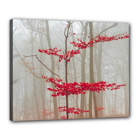 Magic Forest In Red And White Canvas 20  X 16  by wsfcow