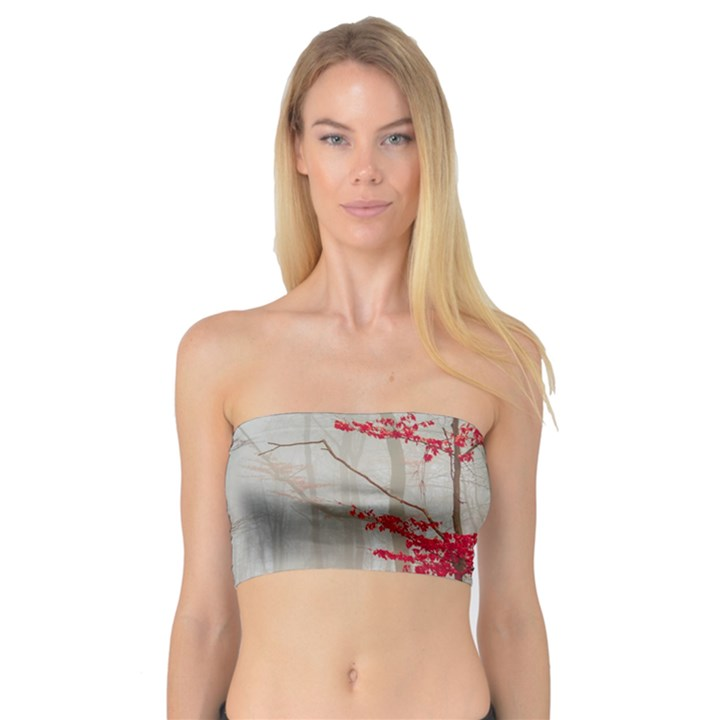 Magic Forest In Red And White Bandeau Top