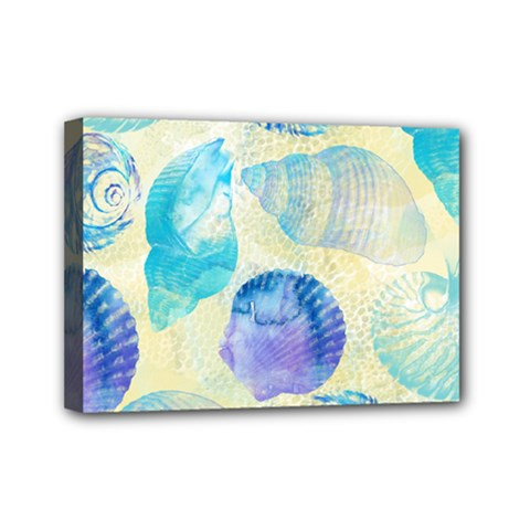 Seashells Mini Canvas 7  x 5