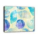 Seashells Canvas 10  x 8  View1