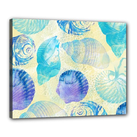 Seashells Canvas 20  x 16