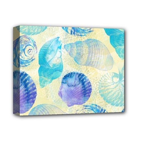 Seashells Deluxe Canvas 14  x 11