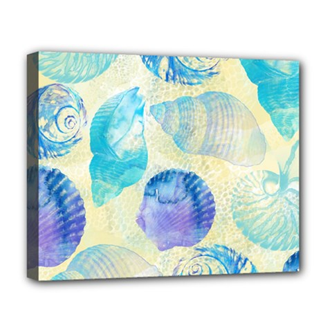 Seashells Deluxe Canvas 20  X 16   by DanaeStudio