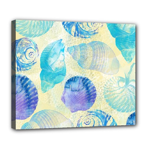Seashells Deluxe Canvas 24  x 20