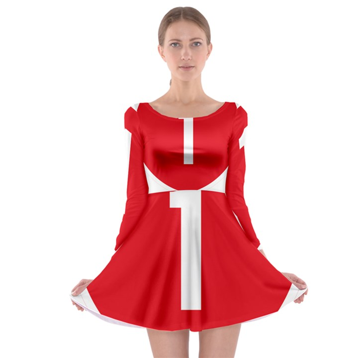 New Zealand State Highway 1 Long Sleeve Skater Dress