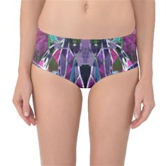 Sly Dog Modern Grunge Style Blue Pink Violet Mid Waist Bikini Bottoms by EDDArt