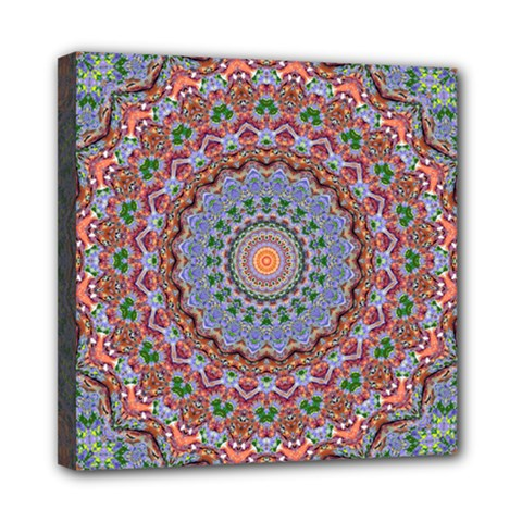 Abstract Painting Mandala Salmon Blue Green Mini Canvas 8  X 8