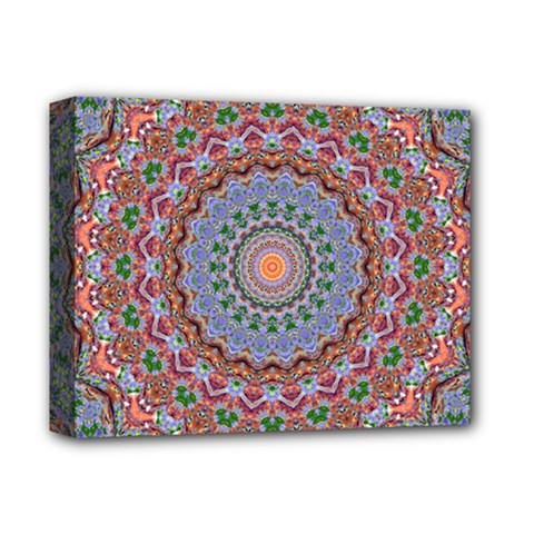 Abstract Painting Mandala Salmon Blue Green Deluxe Canvas 14  X 11  by EDDArt
