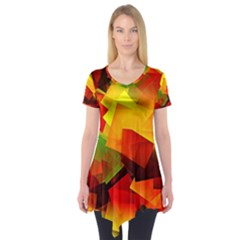 Indian Summer Cubes Short Sleeve Tunic  by designworld65