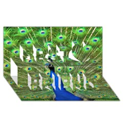 Bird Peacock Best Friends 3d Greeting Card (8x4)