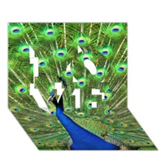 Bird Peacock Love 3d Greeting Card (7x5)