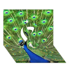 Bird Peacock Ribbon 3d Greeting Card (7x5)
