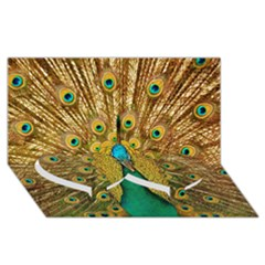 Bird Peacock Feathers Twin Heart Bottom 3d Greeting Card (8x4)