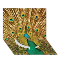 Bird Peacock Feathers Circle Bottom 3d Greeting Card (7x5)
