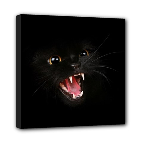 Cat Animal Cute Mini Canvas 8  X 8  by AnjaniArt