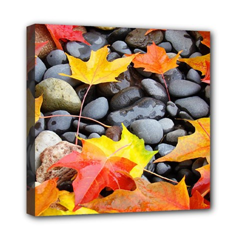 Colorful Leaves Stones Mini Canvas 8  X 8  by AnjaniArt