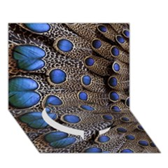 Feathers Peacock Light Circle Bottom 3d Greeting Card (7x5) by AnjaniArt
