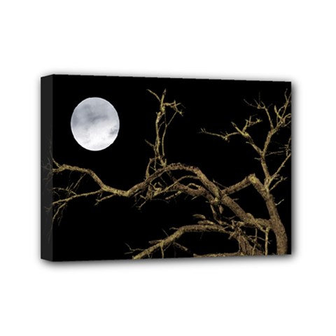Nature Dark Scene Mini Canvas 7  X 5  by dflcprints