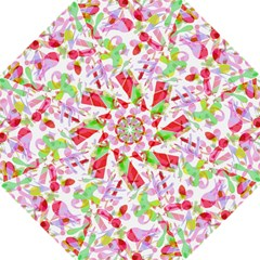 Summer Hook Handle Umbrellas (medium) by Valentinaart