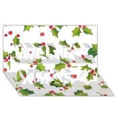 Images Paper Christmas On Pinterest Stuff And Snowflakes Merry Xmas 3d Greeting Card (8x4) by AnjaniArt