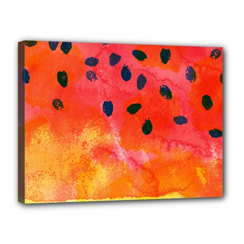 Abstract Watermelon Canvas 16  X 12  by DanaeStudio