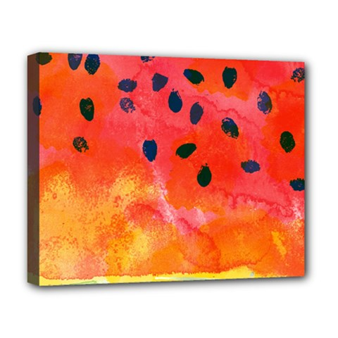 Abstract Watermelon Deluxe Canvas 20  X 16   by DanaeStudio
