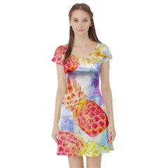 Colorful Pineapples Over A Blue Background Short Sleeve Skater Dress by DanaeStudio