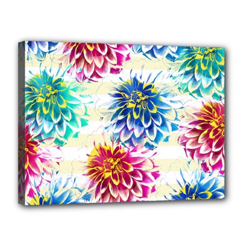 Colorful Dahlias Canvas 16  x 12