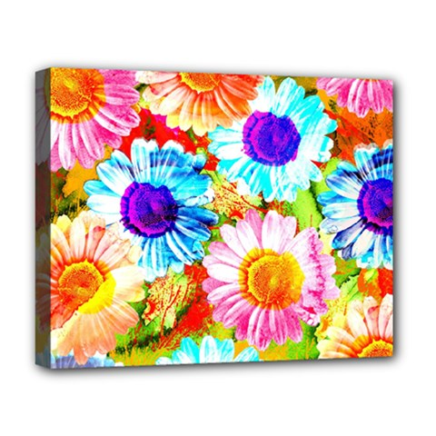 Colorful Daisy Garden Deluxe Canvas 20  X 16   by DanaeStudio