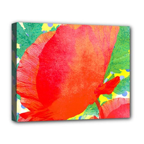 Lovely Red Poppy And Blue Dots Deluxe Canvas 20  X 16   by DanaeStudio
