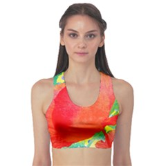 Lovely Red Poppy And Blue Dots Sports Bra