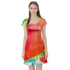 Lovely Red Poppy And Blue Dots Short Sleeve Skater Dress