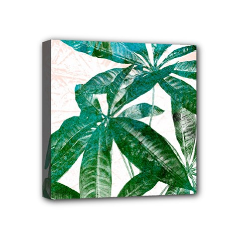 Pachira Leaves  Mini Canvas 4  X 4