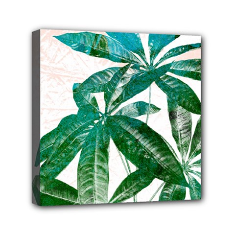 Pachira Leaves  Mini Canvas 6  X 6