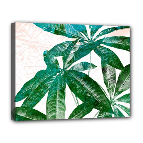 Pachira Leaves  Canvas 14  X 11