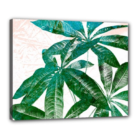 Pachira Leaves  Canvas 20  X 16