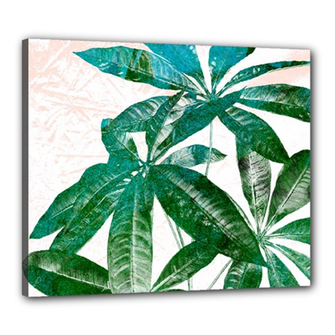Pachira Leaves  Canvas 24  X 20
