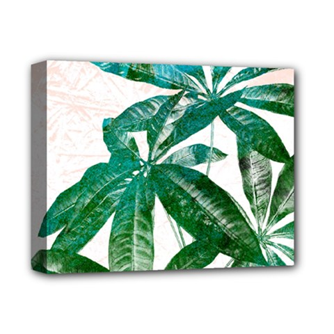 Pachira Leaves  Deluxe Canvas 14  X 11