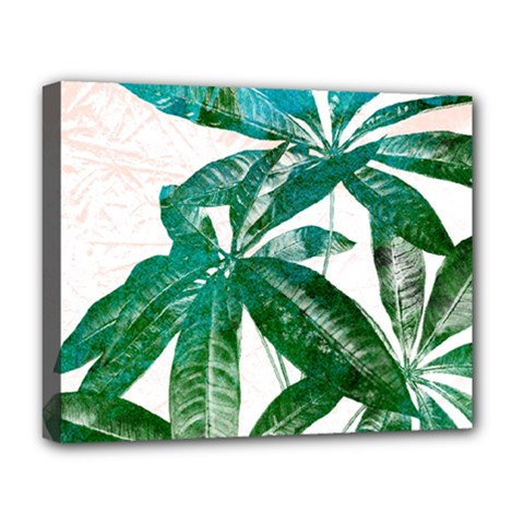 Pachira Leaves  Deluxe Canvas 20  X 16   by DanaeStudio