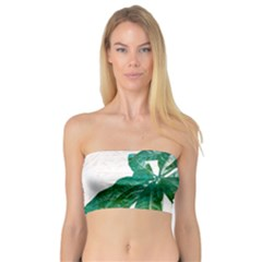 Pachira Leaves  Bandeau Top