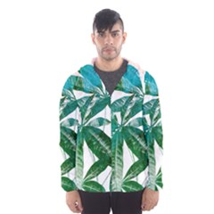 Pachira Leaves  Hooded Wind Breaker (men)