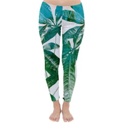 Pachira Leaves  Classic Winter Leggings