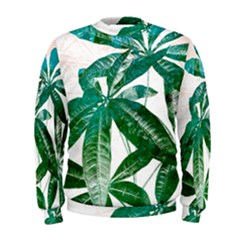 Pachira Leaves  Men s Sweatshirt