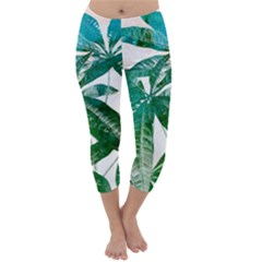 Pachira Leaves  Capri Winter Leggings