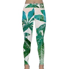 Pachira Leaves  Classic Yoga Leggings