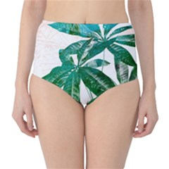 Pachira Leaves  High Waist Bikini Bottoms