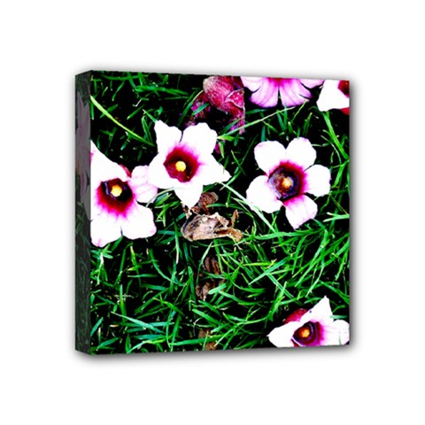 Pink Flowers Over A Green Grass Mini Canvas 4  X 4
