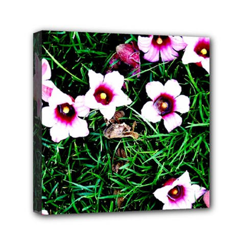Pink Flowers Over A Green Grass Mini Canvas 6  X 6